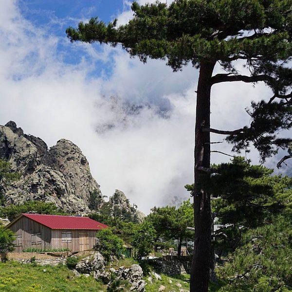 Alta Rocca3 600x600 - 10 Tage Geheimnisse: Roadtrip im Zelt durch Korsika  – Teil 2