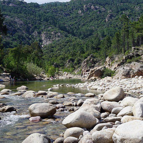 CP U Rosumarinu1 600x600 - 10 Tage Geheimnisse: Roadtrip im Zelt durch Korsika  – Teil 2