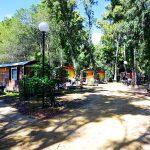 Campsite La Pinede1 150x150 - 10 Tage Geheimnisse: Roadtrip im Zelt durch Korsika  – Teil 1