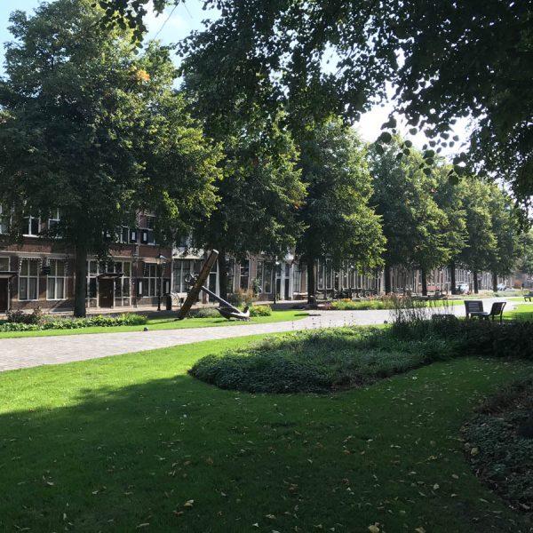 Zerikzee Garten 600x600 - Warum Ginsterveld? Renesse einfach entspannt erleben
