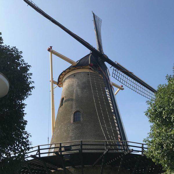 Zerikzee Windmühle 600x600 - Warum Ginsterveld? Renesse einfach entspannt erleben